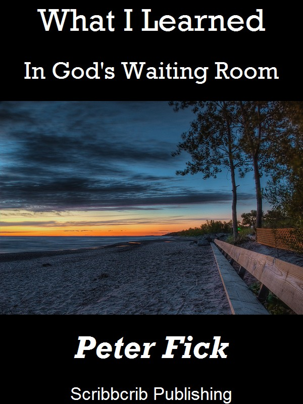 What I Learned In Gods Waiting Room Cover